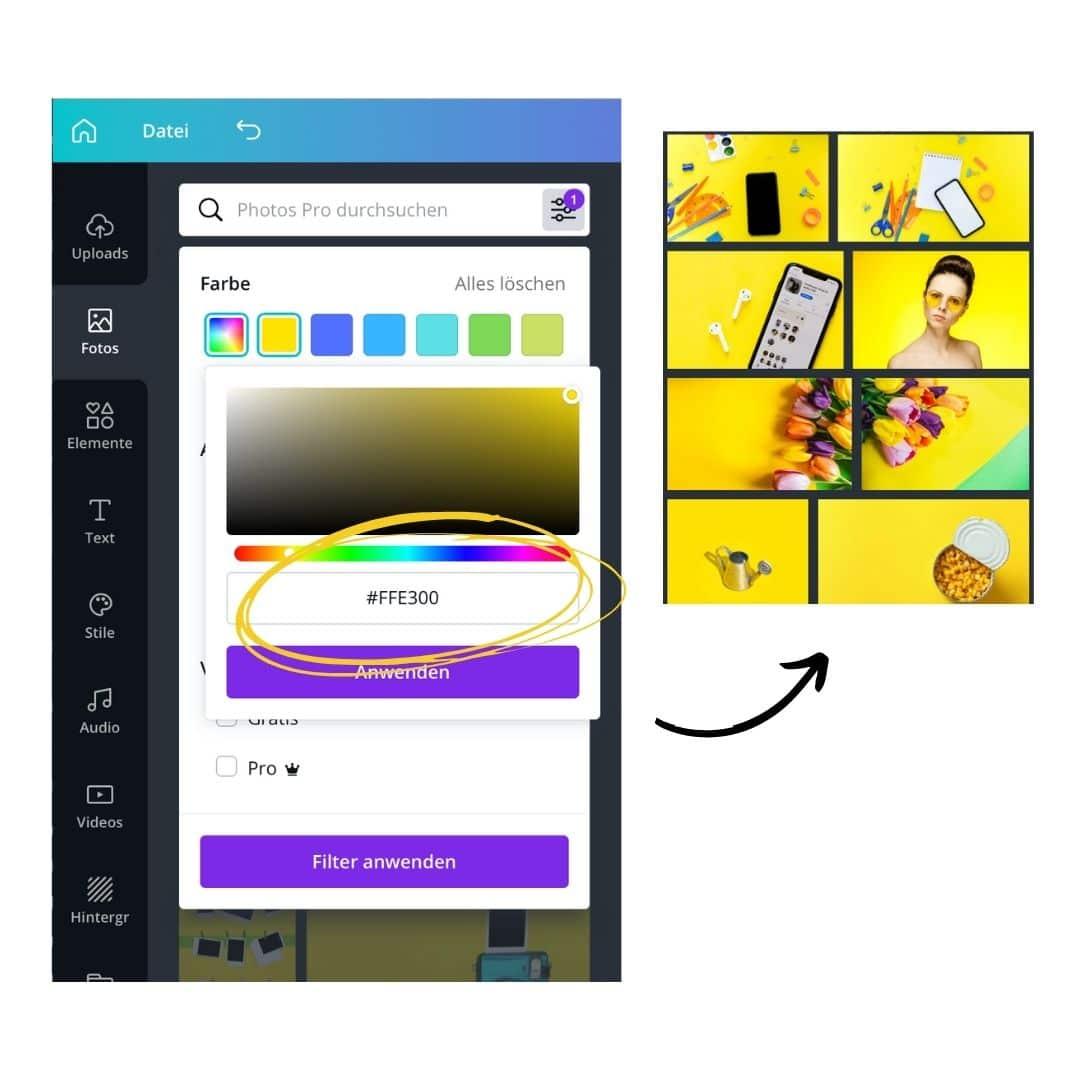 Fotos in Branding Farben finden